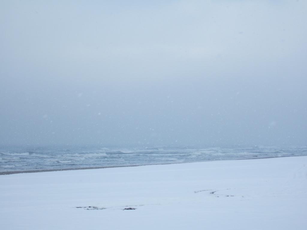 雪かき_c0132732_12165953.jpg