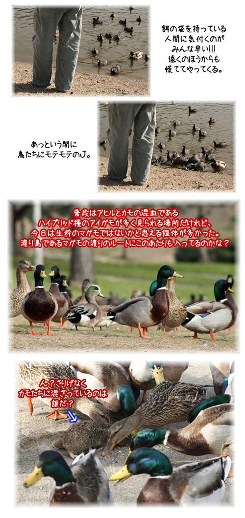 f0027944_1272513.jpg