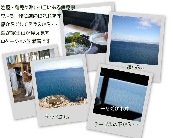 e0096955_2012295.jpg