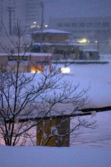 止まない雪もないね。_e0084756_23235837.jpg