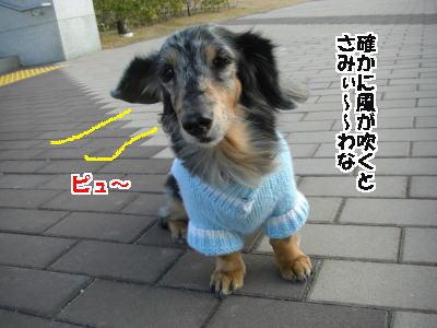 d0020869_13431036.jpg