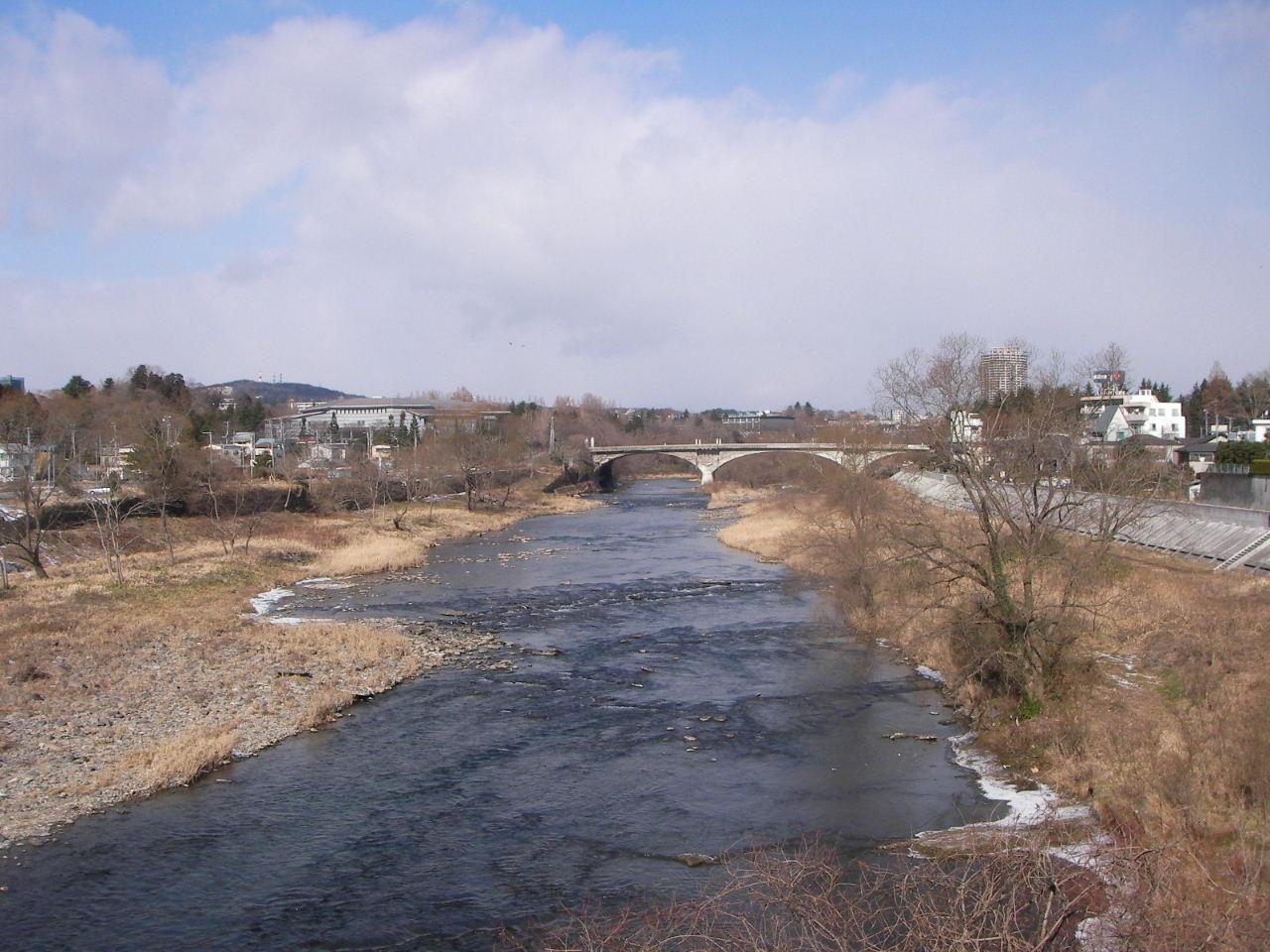 冬の広瀬川散策 (大手町~西公園)_f0100593_14213794.jpg