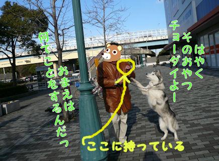 f0112407_16221647.jpg