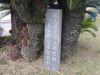 鹿児島大学医学部熱研_e0041337_14295755.jpg