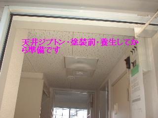 f0031037_18134779.jpg