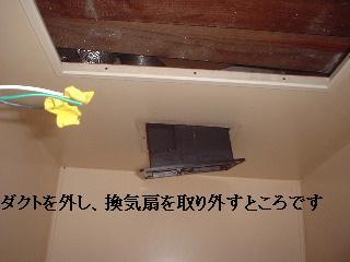 f0031037_1839217.jpg