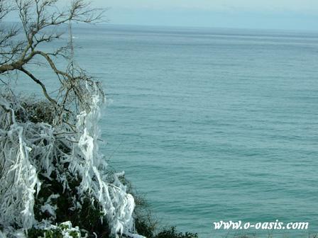 冬の日本海_d0141049_2334192.jpg