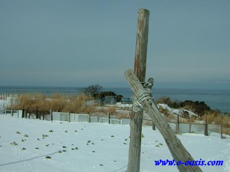 冬の日本海_d0141049_2334243.jpg