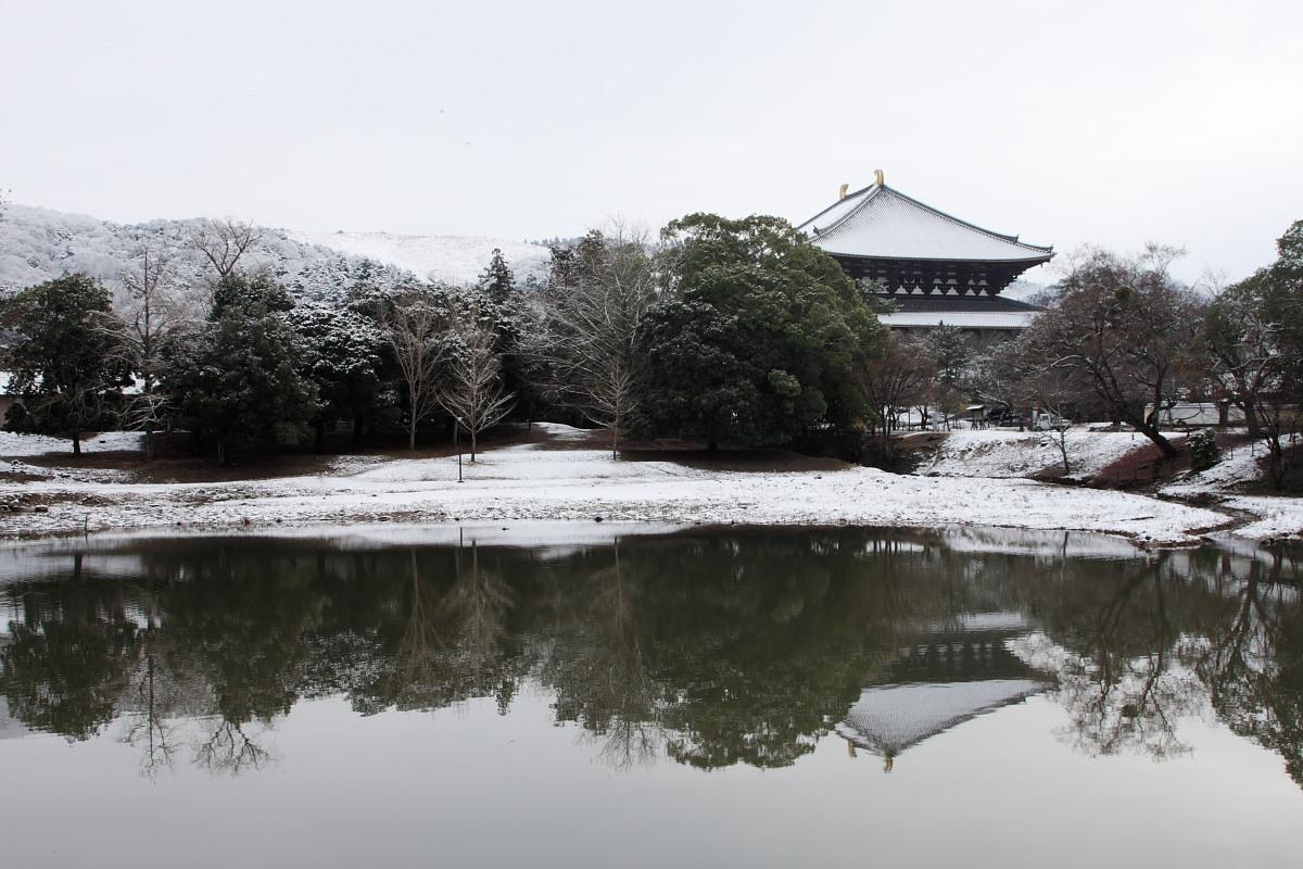 奈良公園 雪景色 _f0021869_12235938.jpg