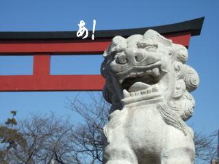 鎌倉_d0091671_23231325.jpg