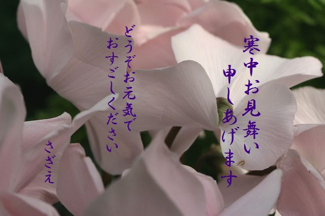 c0013572_13144519.jpg