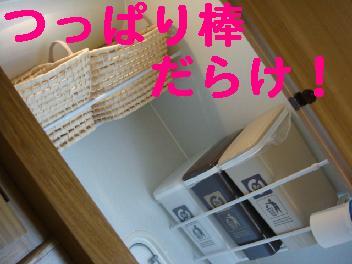 f0138304_9194843.jpg