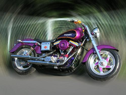Purple Glide_d0130115_21354152.jpg