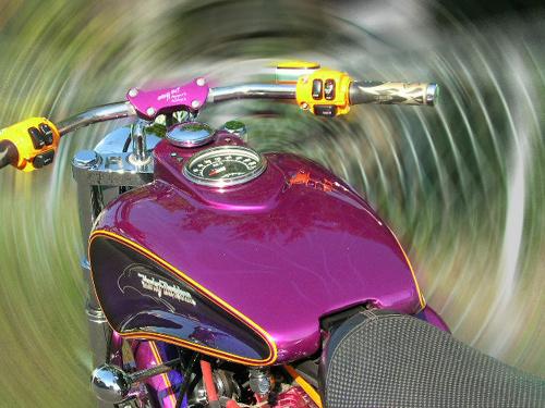 Purple Glide_d0130115_21501847.jpg