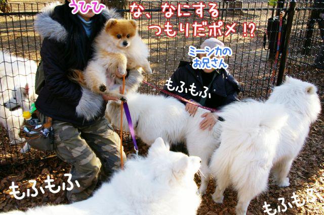 勇者への道_c0062832_1813756.jpg