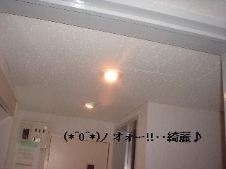 f0031037_19204640.jpg