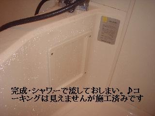 f0031037_1924321.jpg