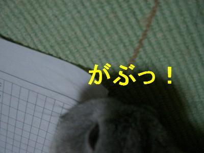f0104057_19103348.jpg