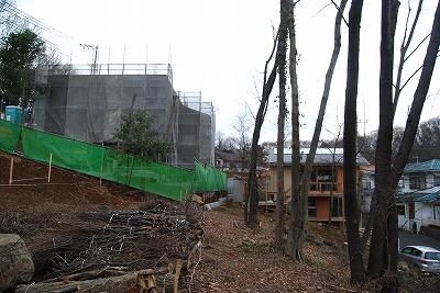周囲の伐採が終わり…_c0124100_17101015.jpg