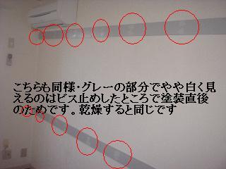 f0031037_1719614.jpg