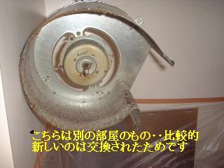 f0031037_1721566.jpg