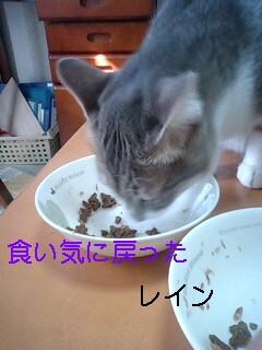 b0112380_11352284.jpg