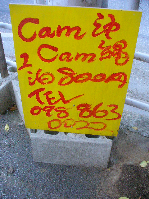 「沖縄朝の散歩」。縄文の痕跡を楽しむ。_c0061686_22321954.jpg
