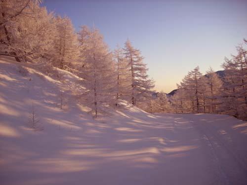 雪景色の美しさ_e0120896_10165642.jpg