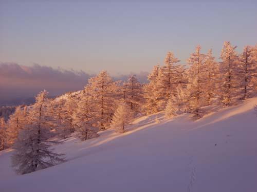 雪景色の美しさ_e0120896_10192012.jpg