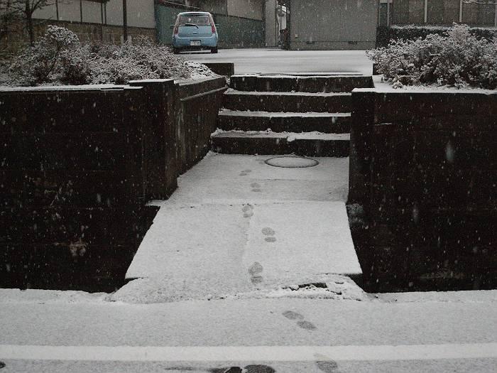 雪の日_b0074098_8184131.jpg