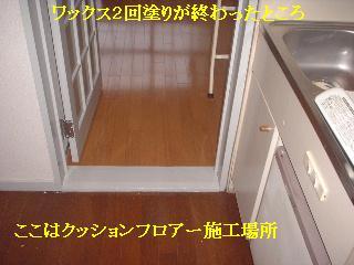 f0031037_1734825.jpg