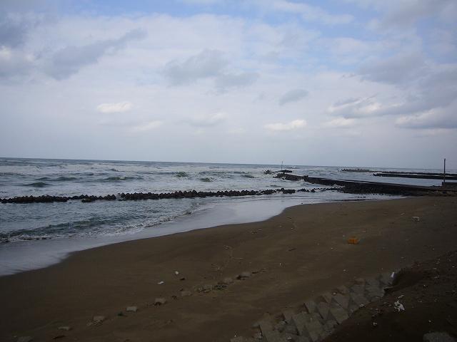 海 1月31日(木)10:00_b0112351_11211177.jpg