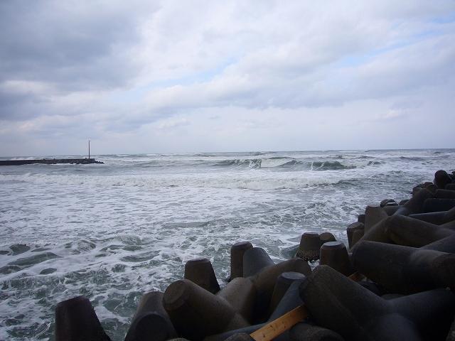 海 1月31日(木)10:00_b0112351_1121362.jpg