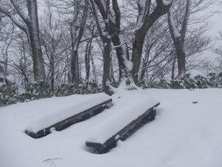 天狗山(603m)広瀬側から 単独_d0007657_16133525.jpg