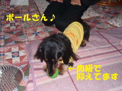 c0151866_2113983.jpg