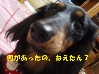 c0151866_21455064.jpg