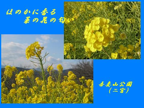 f0110488_18301273.jpg