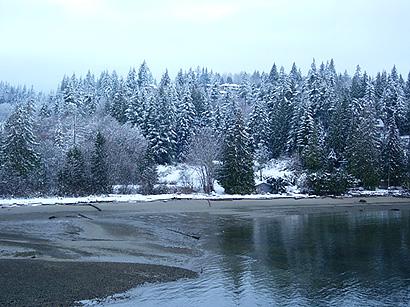 雪に振り回されたコーヒーデリバリー_f0077789_11395230.jpg