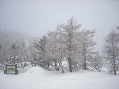 霧氷の朝_e0120896_10164525.jpg