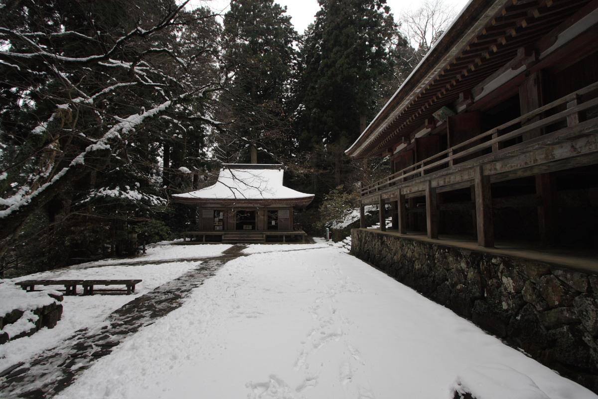 奈良 室生寺 雪景色 1_f0021869_21125190.jpg