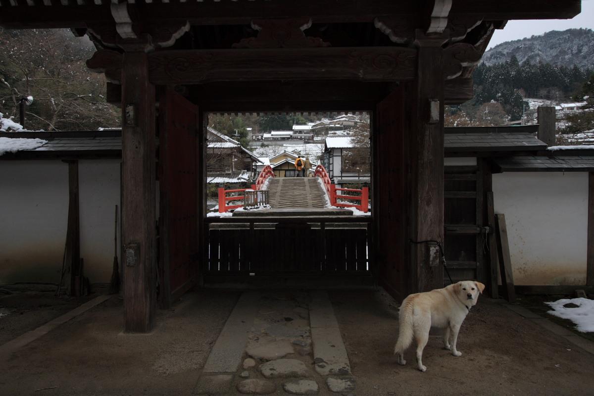 奈良 室生寺 雪景色 1_f0021869_216489.jpg