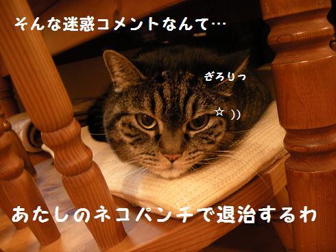 f0081100_8413596.jpg