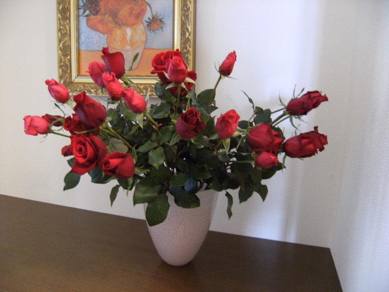 薔薇の館_d0109415_2241381.jpg