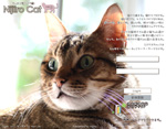 Nijiiro Catのカバーガールならぬカバーボーイになりました。^^