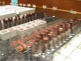 昨日の私 夜の部 チーズとチョコレートのビュッフェ_f0007061_051152.jpg