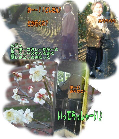 f0082367_12114671.jpg