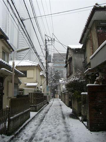その後の雪_a0057402_15482487.jpg
