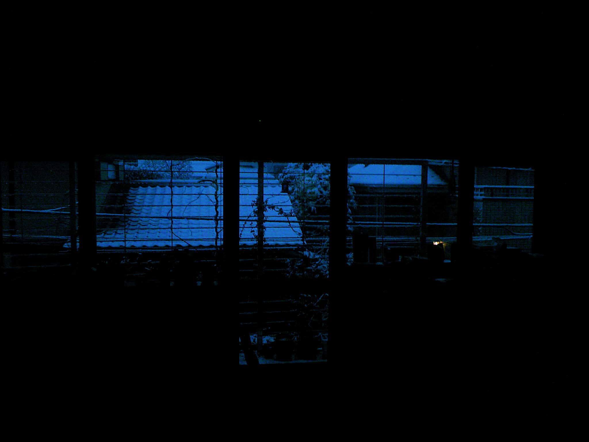 東京も雪_b0060102_772227.jpg