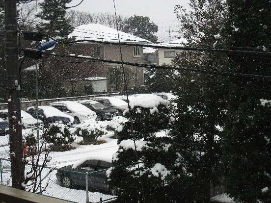 また雪景色・・・_f0141609_1444854.jpg