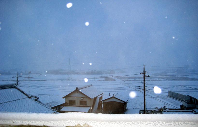 雪が降るドッグショー_d0151813_1838971.jpg